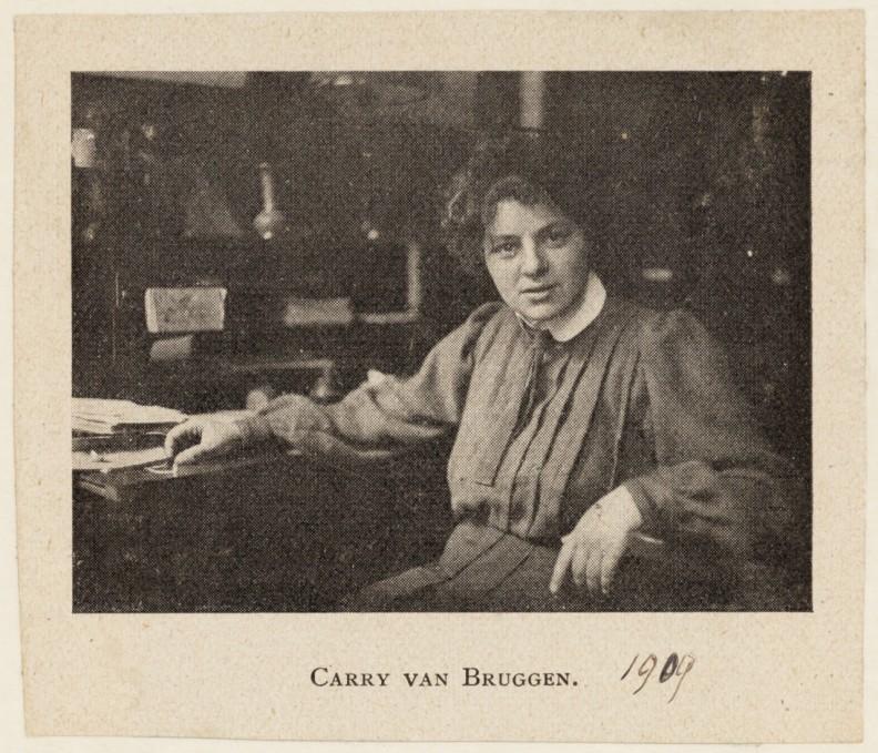 8-Carry-van-Bruggen