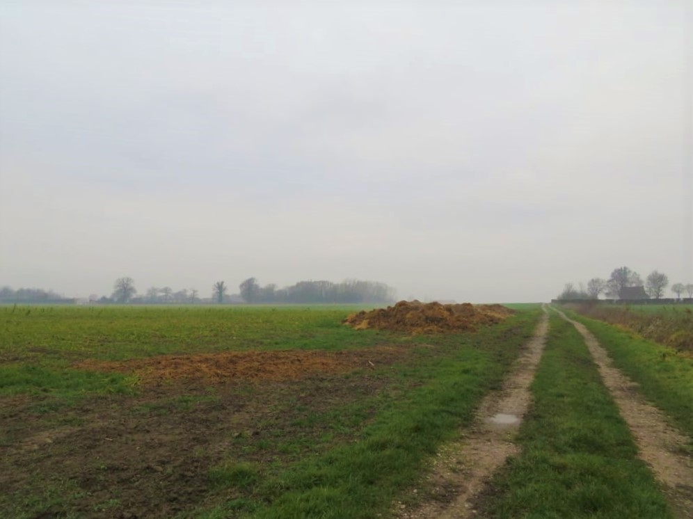II-13-Eerste-etappe-Buisscheure-veldweg-ergens-voor-West-Houck