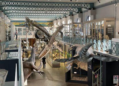 Musée Lille 8